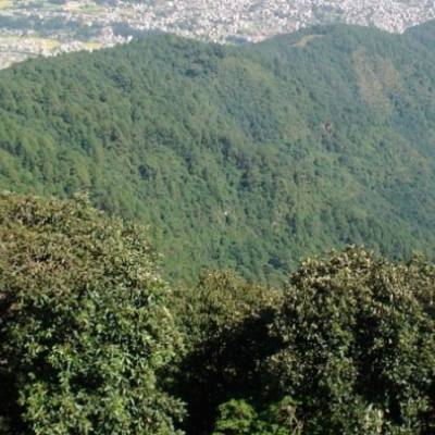 1 Day Nagarjun Hiking