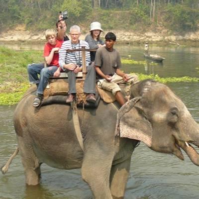 1 Day Wildlife safari Tour